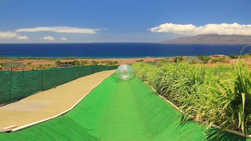 aquaball rolling down a course in Maui
