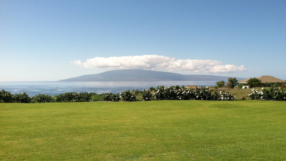 Show item 8 of 8. a large open field near the beach in Maui