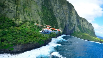 Kona Volcano & Waterfall Helicopter Tour, Rainforest Landing