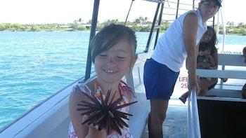 Glass-Bottom Boat Tour in Waikoloa