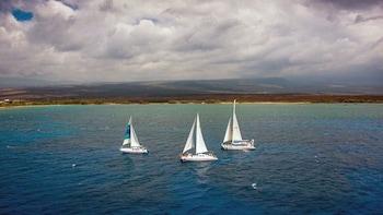 Kohala Coast Snorkelling & Sailing Tour