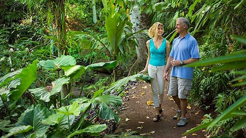 people walking through garden in kauai