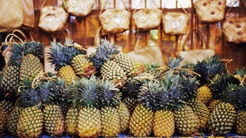 Guided Pineapple Plantation Tour