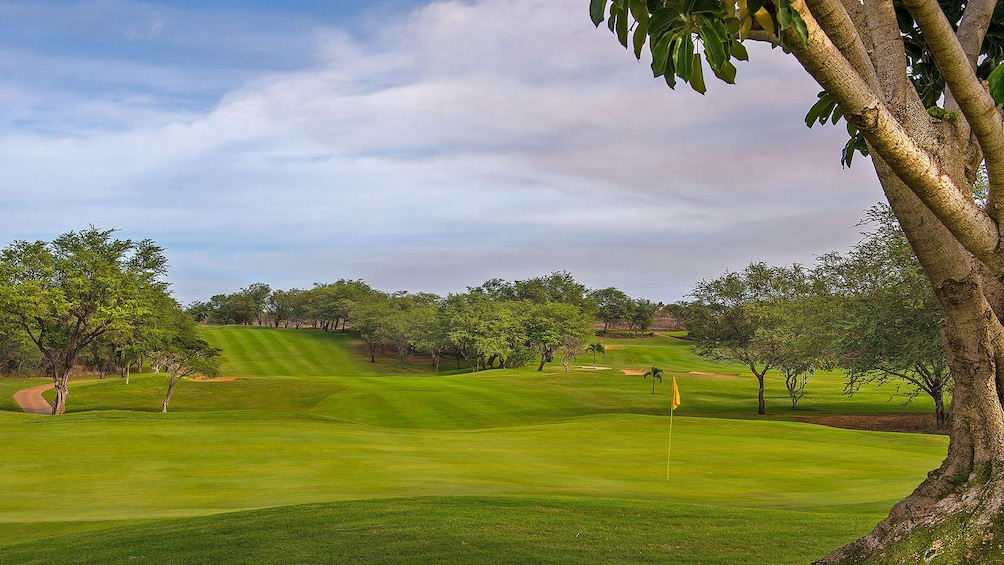 Show item 1 of 5. Lush green golf course in Maui