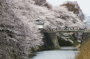 Enjoy the view of Sakura,Making Soba,Ginzan Onsen