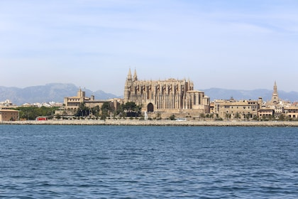 Scenic Cruise in the Bay of Palma