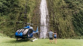 Kohala Coast Valleys & Waterfalls Helicopter Tour