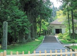 Iwate Geibikei Gorge & Chusonji&Motsuji Temple Tour