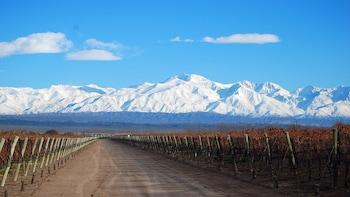Tour de 4 días en Mendoza con degustaciones de vinos