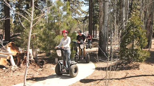 Group of people riding segways down winding walk path.
