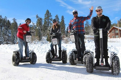 Awesome Winter Segway Picture.jpg
