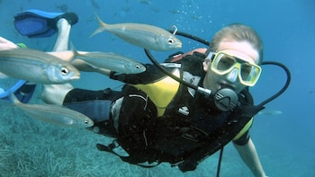 Scuba Diving Experience in Alanya