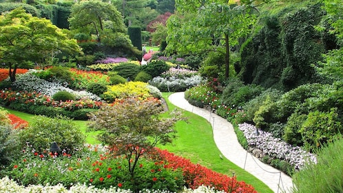 Path weaving through the vibrant grounds of Butchart Gardens in Victoria