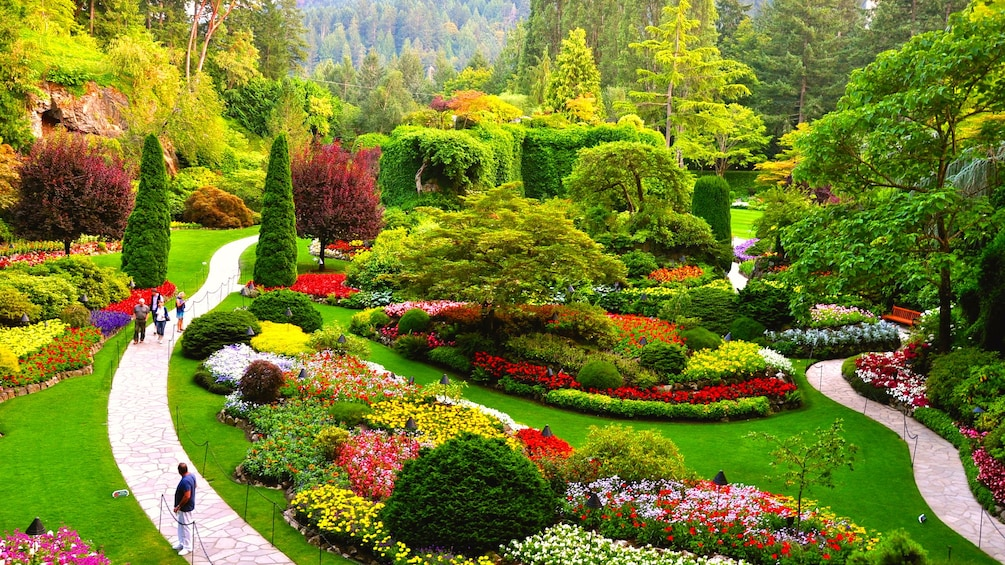 Show item 1 of 4. Butchart Gardens