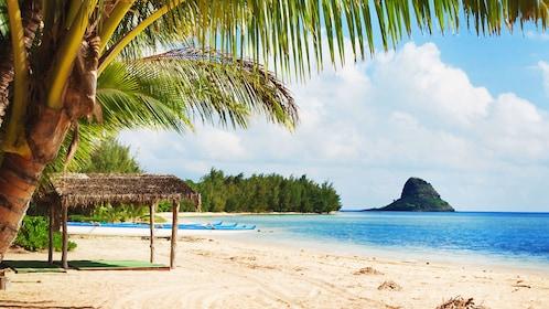 Enjoy the sandy beach at Kualoa, Oahu