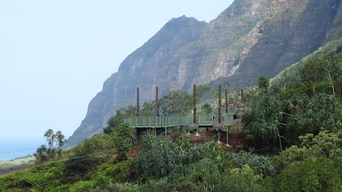 Zipline launch platform and mountains on Oahu