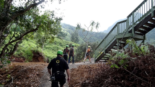 Group walking up ramp to zipline platform on Oahu