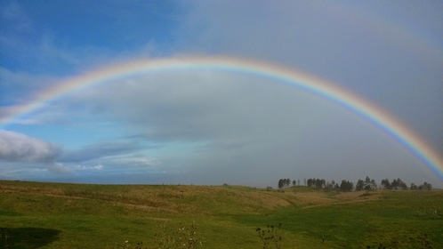A rainbow over a green meadow in Maui