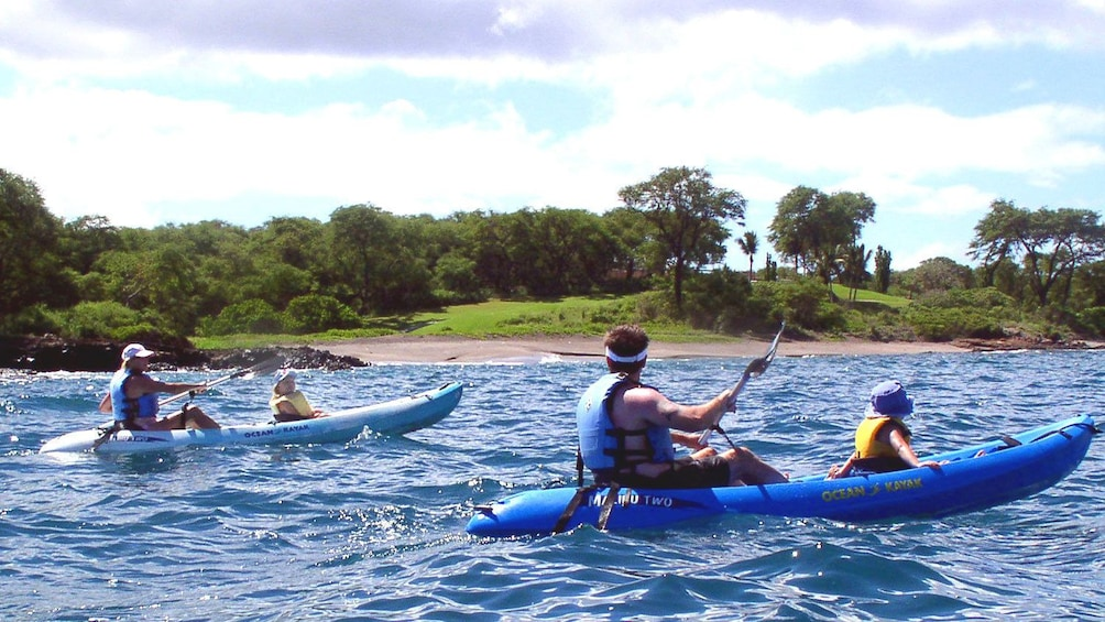 Show item 1 of 7. Kayaking group in Maui