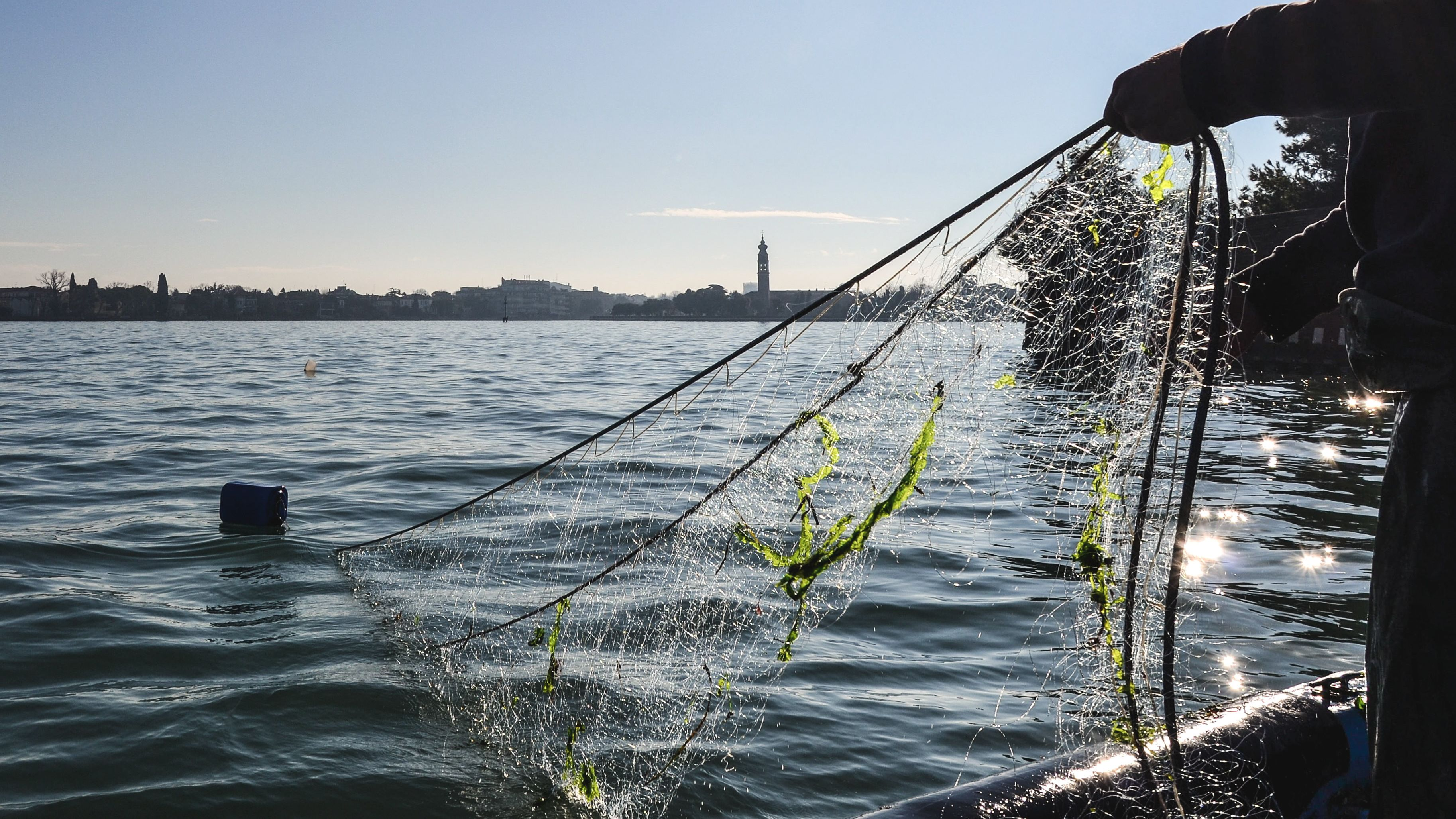Close up of fishing net being pulled from water.