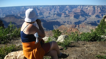 Northern Arizona & Grand Canyon Day Tour with Lunch
