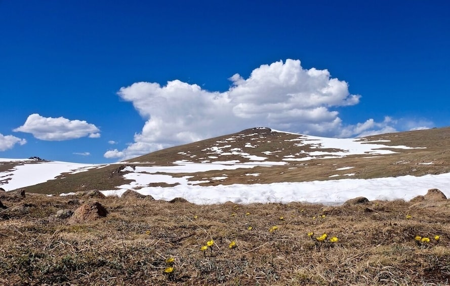 Show item 3 of 11. Private Full-Day Rocky Mountain National Park Tour