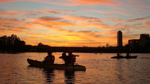 Silhouette of kayakers in river at sunset.