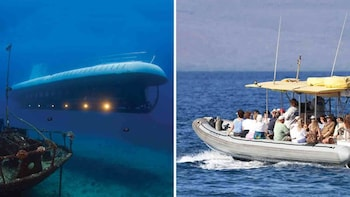 Submarine & Lanai Dolphin Watch and Snorkel Combo