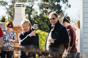 Martinborough Wineries Walking Tour with Food and Wine Tasting