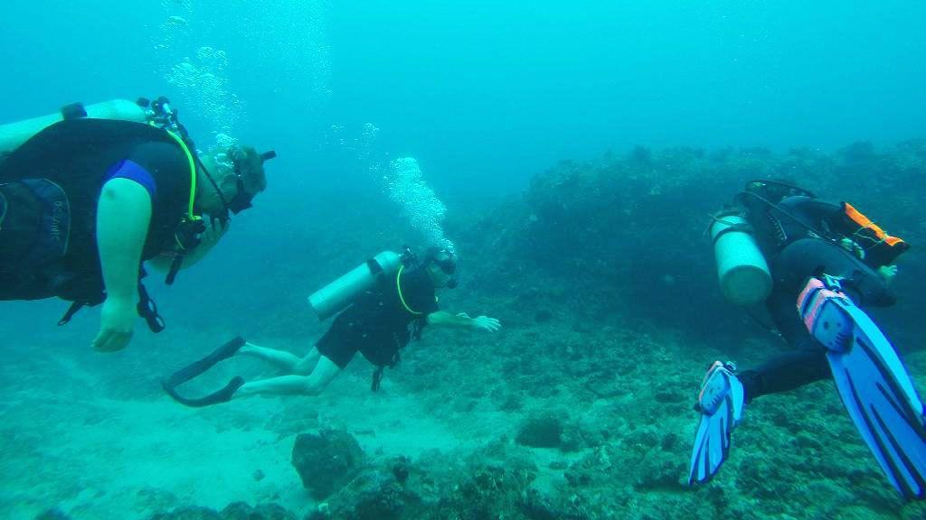 Underwater Scuba scene in Oahu