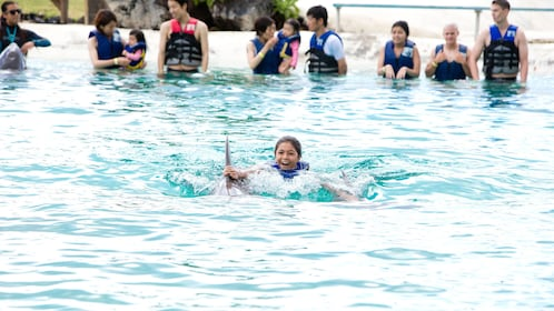Girl takes ride with dolphin at Sea Life Park in Oahu