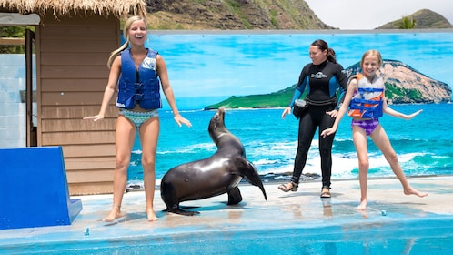 Children interact with a sea lion at the Sea Life Park