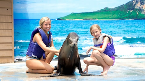Children pet a sea lion at the Sea Life Park in Oahu