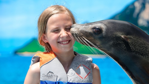Sea lion kisses girl on cheek at the Sea Life Park in Oahu