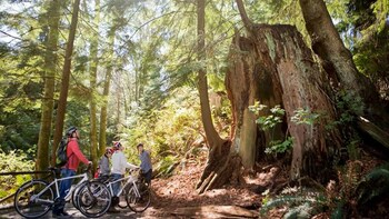 Stanley Park Bicycle Tour