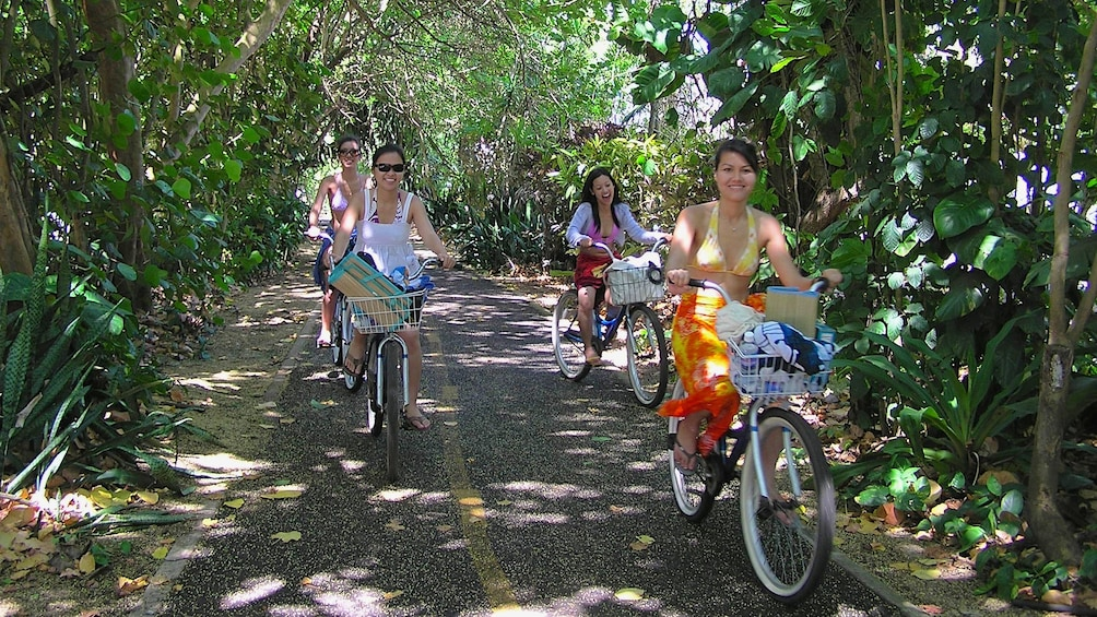 Show item 4 of 10. People riding bicycles on shaded path in Oahu