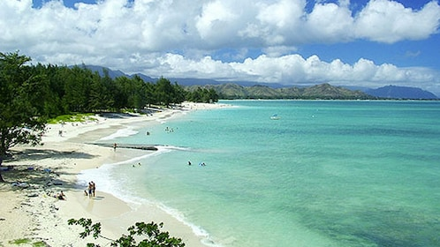 Sandy beach and coastline in Oahu