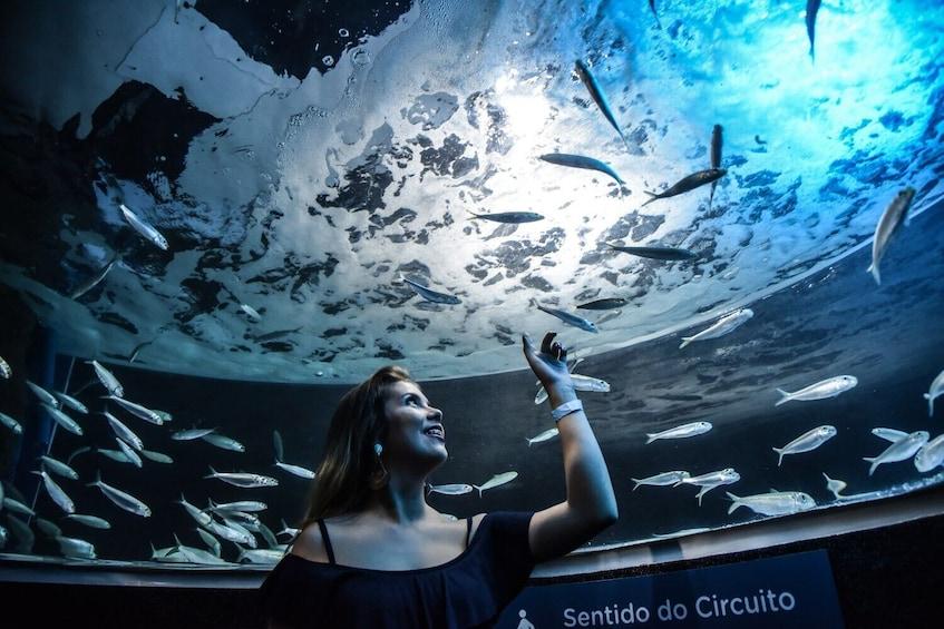 Öppna foto 3 av 5. AquaRio Aquarium Admission with Transportation
