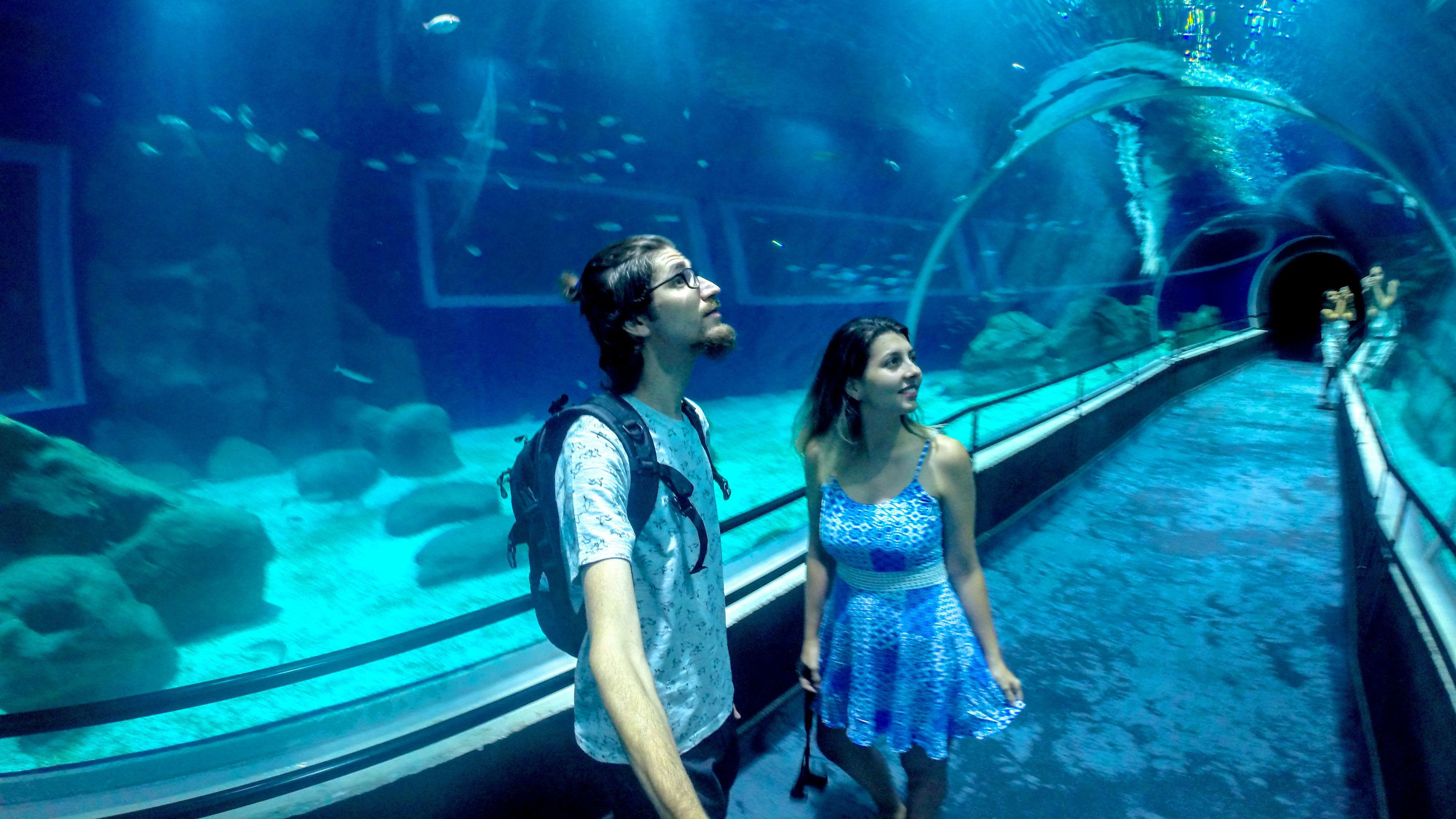 Man and Woman in tunnel of Aquarium in Rio De janeiro