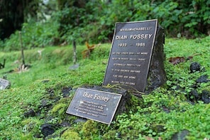 2-Day Private Trek to Dian Fossey's Grave and Cultural Tour