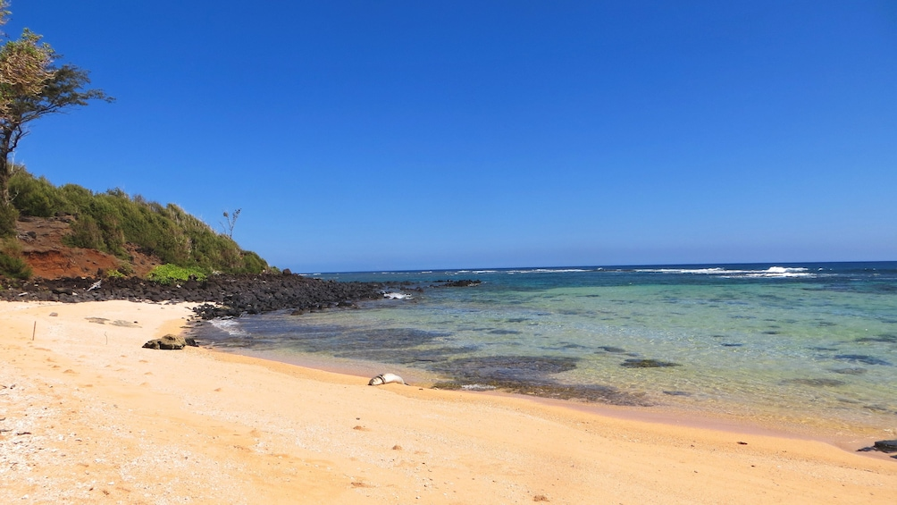 View of beautiful Kauai coastline.