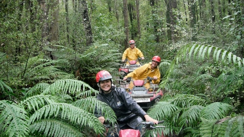 ATV group riding through the rainforest in New Zealand