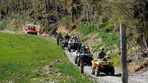 Line of ATVs and buggies on a dirt road in New Zealand