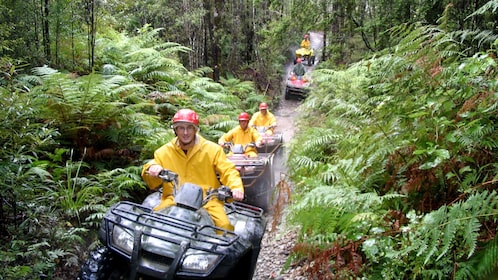 Row of ATV rider on a dirt path through the forest in New Zealand