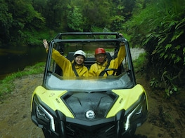 Rainforest Off-Roading Quad Bike Adventure