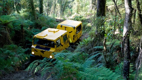 Yellow Hagglund all-terrain vehicle in the rainforest in New Zealand