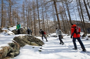 Snowshoes walking tour at the footsteps of Mount Rosa