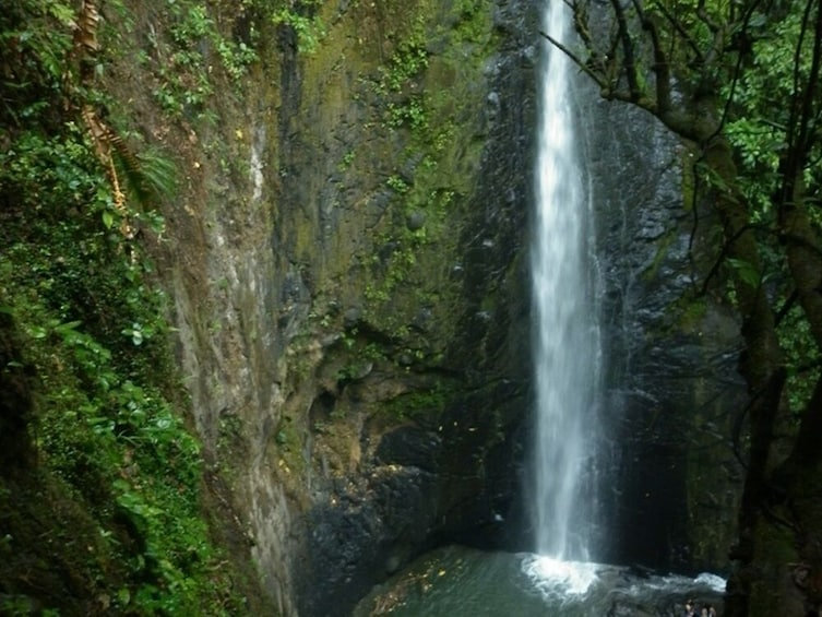 Show item 5 of 6. Full Day Towards the El Tambo Waterfall (Private)