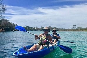 2-Hour Rental Kayak Double in Brunswick River