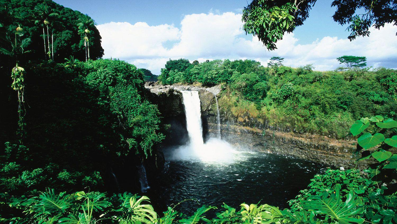 Waterfall in lush rain forest in Hawaii